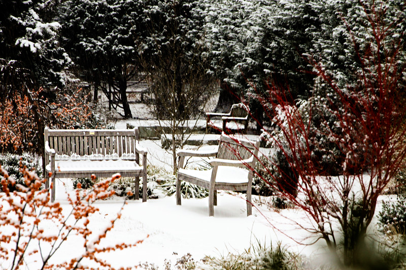 THree Snowy Benches